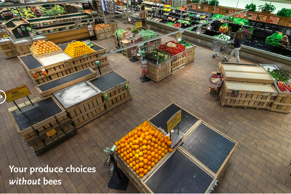 This is what your supermarket would look like without bees... http://t.co/4pZIvd6pLq http://t.co/w0NvEUwIzK