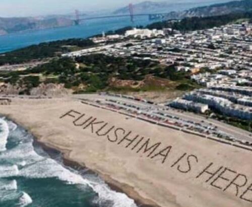 米西海岸 「Fukushima is Here.(福島がここまで来ています)」「巨大な国際的危機」「多くのカリフォルニア住民や官公庁が、オバマ政権に対し何らかの行動を起こすよう求めている」http://t.co/Da4us7h8B4 http://t.co/zEJx6PKgLS