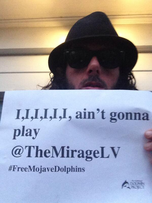 Hey @TheMirageLV, thank but no tanks #FreeMojaveDolphins #Tweet4Dolphins http://t.co/hltziOEz1K