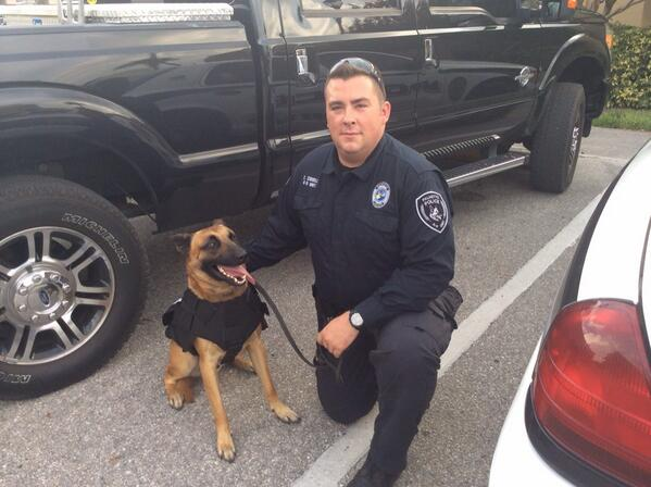 RT @PalmettoPD: Our newest K9 gets to work with his partner everyday. #TakeYourDogToWorkDay #bestjobever http://t.co/S7f9480z3N