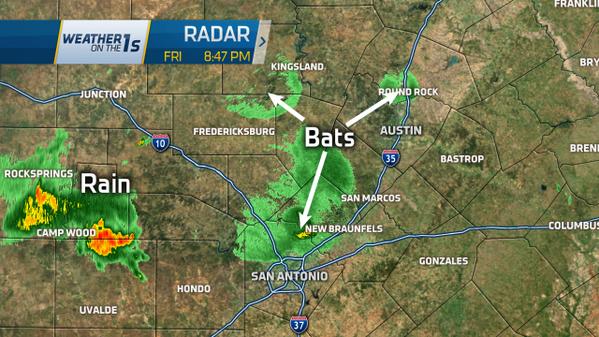 WEATHER: Bats on radar... never gets old :)  -Adam http://t.co/E7VuSG4Imk