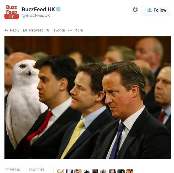 영국 부엉이 사태 총정리ㅋㅋㅋ 머글들은 덤빌 수 없는 호그와트의 나라, 영국 클라쓰  http://t.co/UhY5tfmB2A http://t.co/kW40mUEyU6
