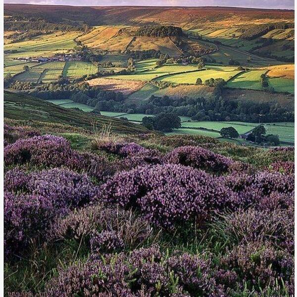 England #beautiful http://t.co/GjR67nLLQx http://t.co/d1ozfhxvIK