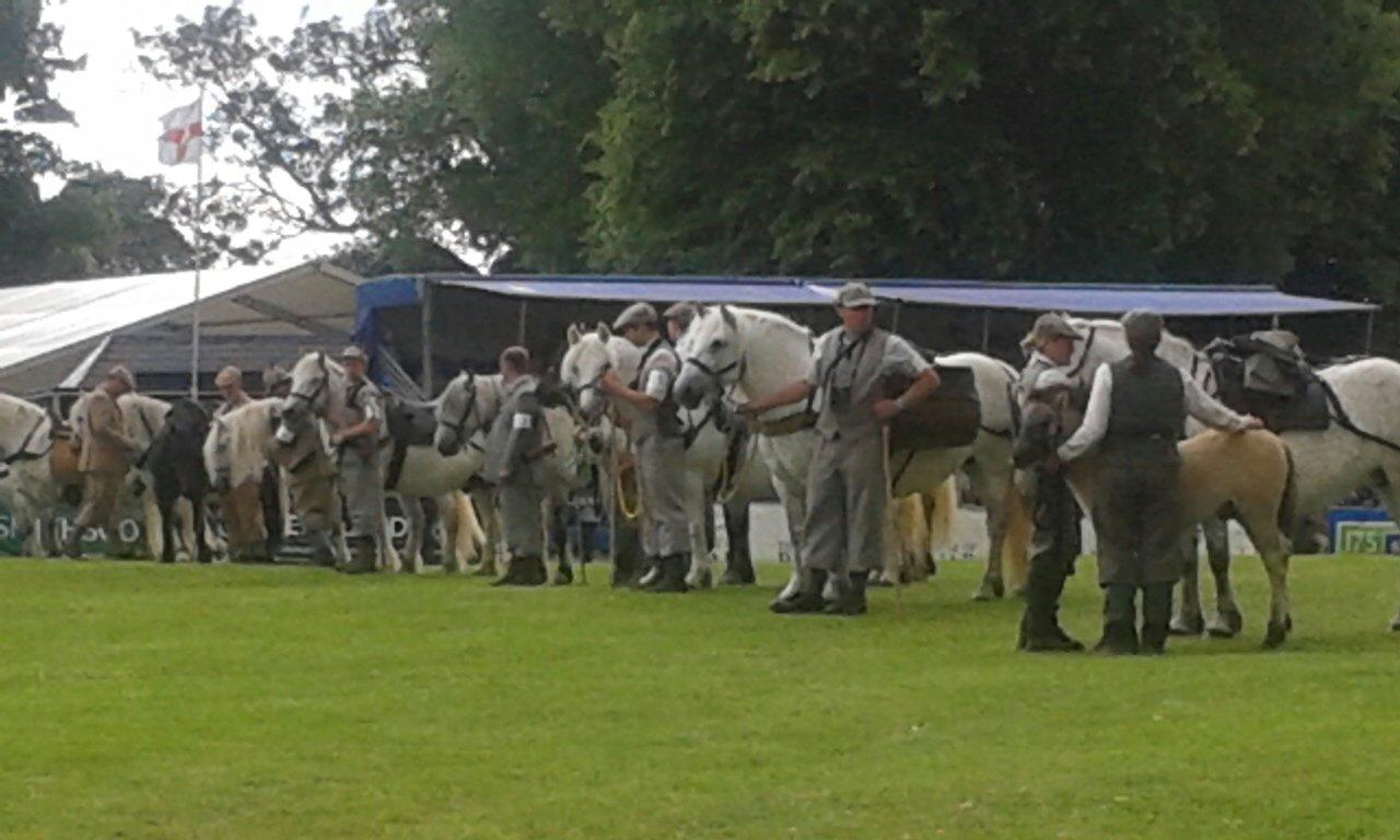 RT @AnneSGray: Felt quite emotional watching these beautiful working highland ponies today @ScotGameFair  Doing what bred to do. http://t.co/cUj1O2sVEh