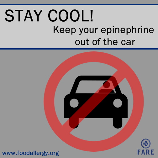 Epinephrine shouldn't be stored in a vehicle, where temps can climb to triple digits. Keep it at room temperature! http://t.co/KbofuQiZju