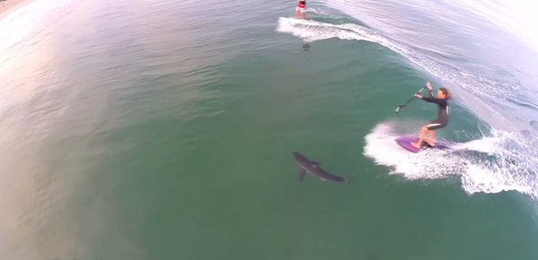 More #shark news: #SUP #surfer rides over #GreatWhiteShark in LA... Watch: http://t.co/vNO6AEZ0MF  #supconnect http://t.co/qBq3LgOXnb