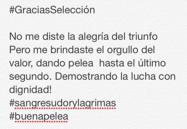 #GraciasSelección  #sangresudorylagrimas #buenapelea http://t.co/VZhghE50dR