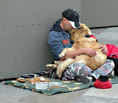 Unconditional love - no matter your path in life, a dog will always follow and be by your side. http://t.co/QYcClXkj0d