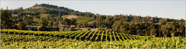 Renwood Winery is located in the Shenandoah Valley of Amador County in #California #wine #Zinfandel #WITS2014 http://t.co/kHJvBMExTe