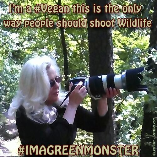 I'm a #Vegan and this is the only way people should shoot Wildlife! #imagreenmonster http://t.co/Qm0rI7WPCP