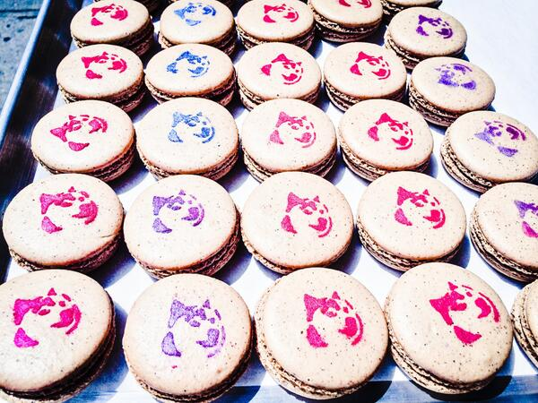 Doge Macarons fresh from Cafe Grumpy for today's Very Charity give-a-way! @cafegrumpy @verycharity #dogecoin #doge http://t.co/wEbX9npgaK