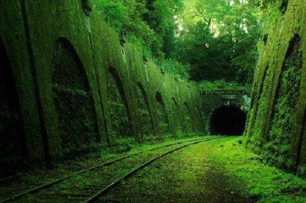 Via de tren abandonada en #Francia. La naturaleza sigue su paso, por donde antes estuvo. http://t.co/pWwD30sqQ6
