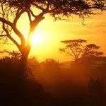 """A brighter morning looks like this, in the """"Pearl of Africa""""- Uganda. http://t.co/ICNrBFObLN"""