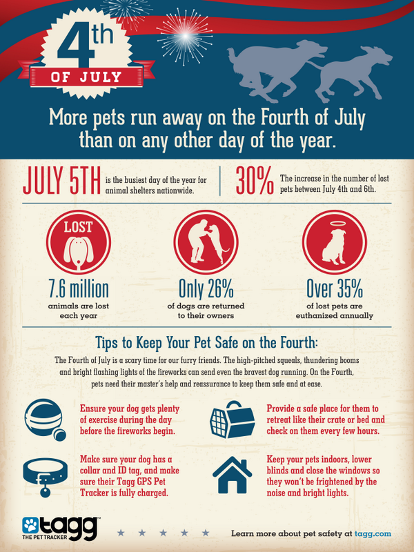More #Pets Run Away On #4thofJuly Than On Any Other Day Of The Year! (Infographic) | Sharing Is Caring #dogs http://t.co/SvJvW2FbsR