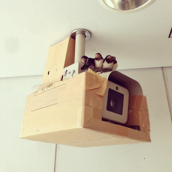 監視カメラの死角。 http://t.co/I3w9qUpzsg