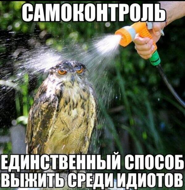 Как-то так... http://t.co/vs8ex8pszi