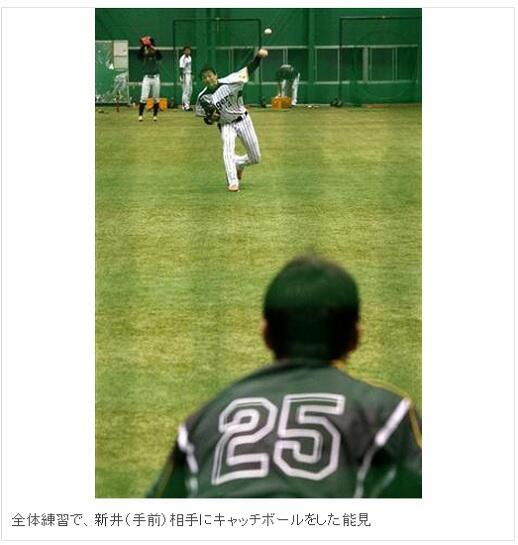 【画像】新井さん、捕手になる: トラニュース