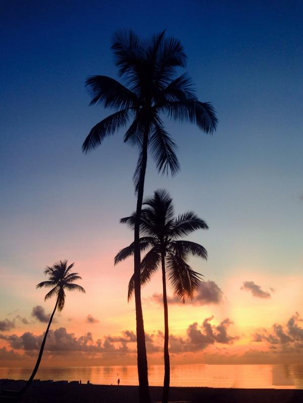 Good morning from the beach RT @FtLauderdaleSun: Old gold. http://t.co/tACBfDDZno