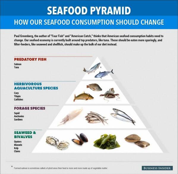 Rethink the seafood pyramid. The future of fish via @4fishgreenberg. http://t.co/hIWSHR2uvJ http://t.co/48v2AGnbPv @DinaSpector
