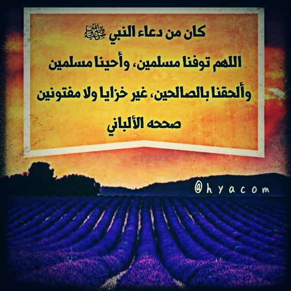 رد: تفنيد شبهة ان عمر رضي الله عنه قال(هجر رسول الله)وابطال حجج مركز الابحاث الشيعي