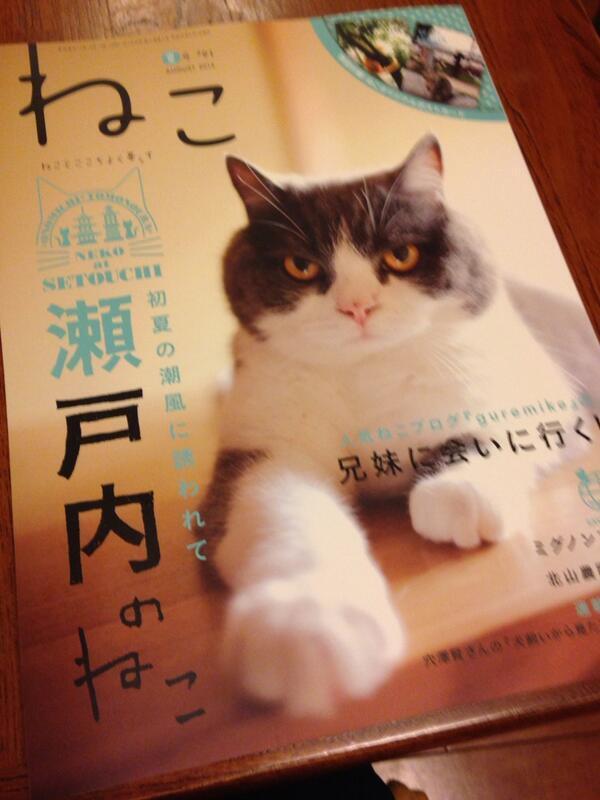 季刊誌『ねこ』7月号。明日発売です。猫の森で毎月やっている「猫師匠と一緒にACOYOGA」の様子が掲載されています。ぜひご覧ください。 http://t.co/AddW9OvtAo http://t.co/yeHcWfJoQ0