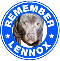 Please Remember Lennox On July 11th, The 2nd Anniversary Of His Murder By @BelfastCC. Change Your Profile For 24hrs. http://t.co/HDbBfCDJjL