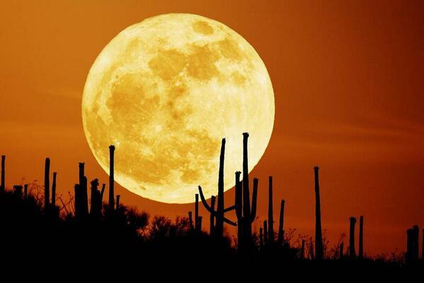 """#ENTÉRATE: Este sábado podremos observar una """"superluna"""": http://t.co/SdLXCVezPH Foto: NASA http://t.co/ujfxYESb9U"""