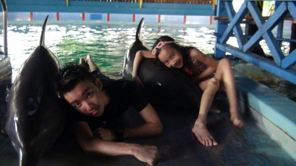 @Gavin_MJ peluk dolphin. ...:) http://t.co/PnLwM8EwtS