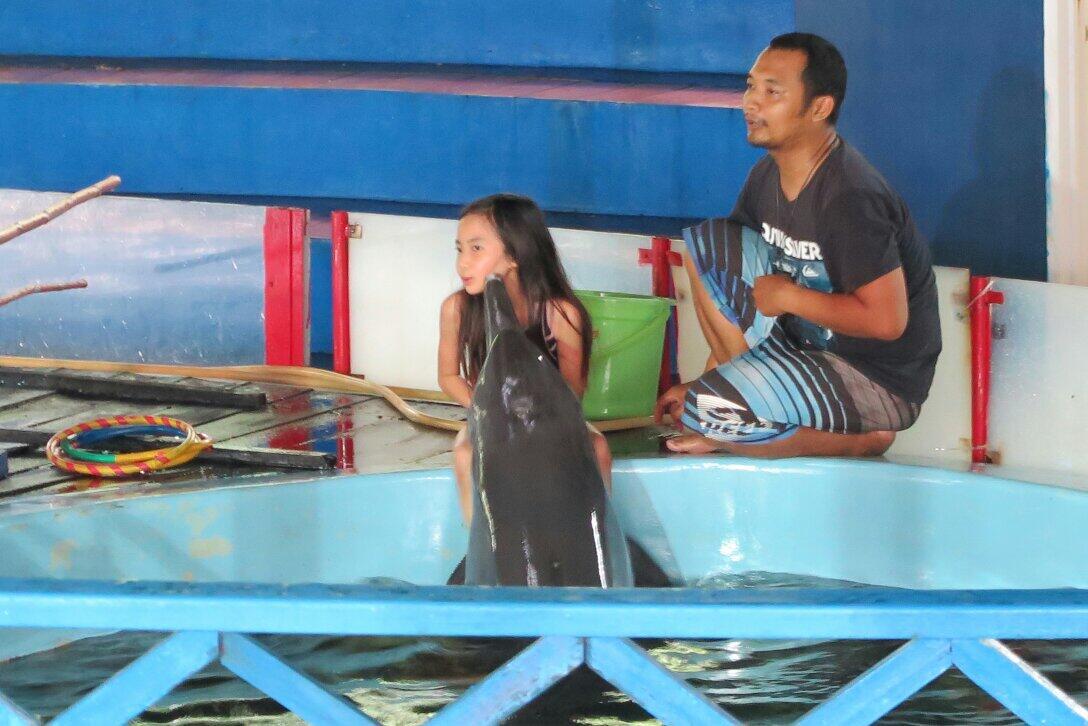 @Gavin_MJ Nyra dicium dolphin http://t.co/lssN7aBE0j