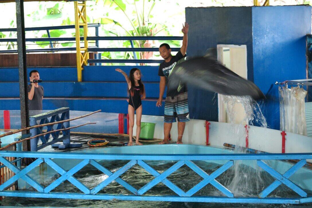 @Gavin_MJ Nyra sedang blajar latih dolphin http://t.co/FUBRIuCuKV