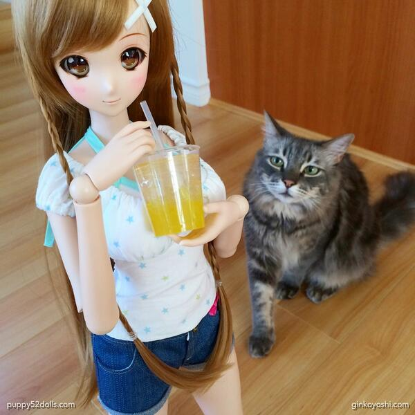Yoshi wants a sip of whatever Mirai #SmartDoll is having on this hot Vancouver afternoon! @MiraiRobotics @dannychoo http://t.co/U2tedsiFaB