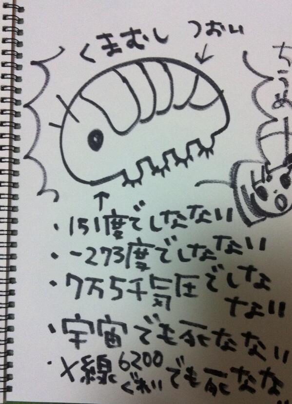 ちうめーくまむし描いたー♪ http://t.co/CZTg7UlGVN