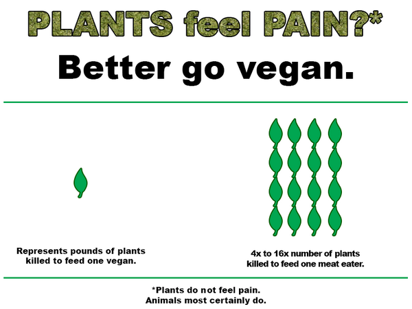Plants feel pain?  Better go #vegan.  It takes up to 16x more dead plants to feed a meat eater. http://t.co/GNzRhu3Rah