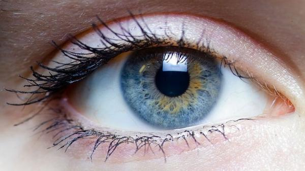 McGill doctors find new method to treat blindness http://t.co/BiH2IpFw77 http://t.co/WroJBnoPqY