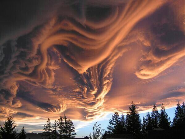This is what Asperatus clouds look like. http://t.co/uAAr5PQ01a