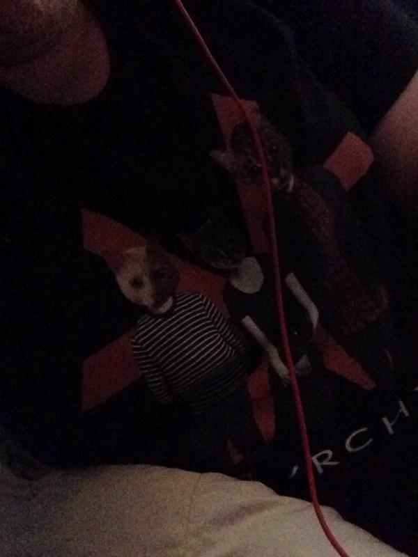 @CHVRCHES THE FACT IM CURRENTLY WEARING MY THE MEOW-THER WE SHARE SHIRT!!!!!! http://t.co/rI62IIePMW
