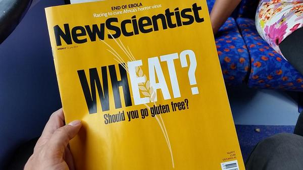 This should be interesting. New Scientist. Should we go gluten free? http://t.co/sUcCjK71DQ