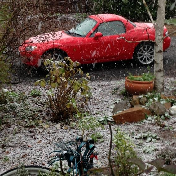 Snowing in Trentham http://t.co/DnSO5RDRGS
