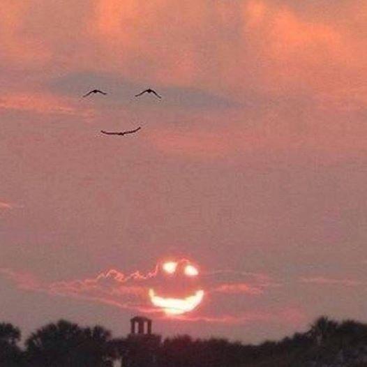 When the sun smiles, the birds smile back! http://t.co/UcdGzL7aPP