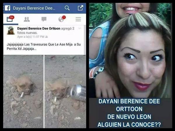 MTYFOLLOW® (@mtyfollow): Esto es crueldad hacia los animales @Cicmty #monterrey RT @asiesmonterrey @mtyVIALIDAD @_LASNOTICIASMTY @info7mty http://t.co/B7Qngd4b7y