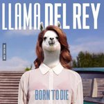 RT @9GAG: I accidentally googled Lama Del Rey, I wasnt disappointed http://t.co/n61AiA08P2 http://t.co/RIcjaueQnn