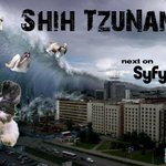 New @SyfyTV shows are really going downhill. #ShihTzunami #sharknado2 http://t.co/H5NMbk9bvM