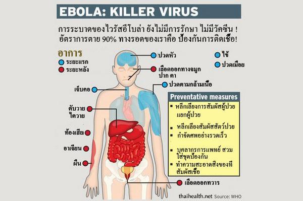 infographic บอกอาการของ Ebola และวิธีป้องกัน ภาพเดียวอยู่ :D จาก WHO แปลโดย http://t.co/IFORwHaYLF http://t.co/CzFV4z8UzK