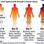 Transmitted through bodily fluids and secretions, beware the Ebola virus because youll know when youve got it: http://t.co/DsYREllfck