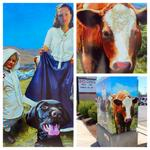 "Leslie Dixons traffic box piece ""Traffic Box, 1888"" on Brentwood and Cedarwood #art #Boise #trafficbox #Idaho #moo http://t.co/J7PH9tj7Xq"