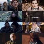 """@TheDove_Stark: When two worlds collide #GameOfThrones #HarryPotter http://t.co/7N9cM5DKxH"""