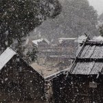 RT @BallaratTimes: #snow on the diggings here @sovereignhill this morning #cold #snowing #ballarat http://t.co/19z2EaWjv8