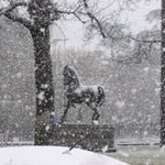 RT @ballaratcourier: This is the statue in the centre of Sturt Street. More snow pictures: http://t.co/bfvh3ZUUvz #Ballarat http://t.co/qvavhAQfR2
