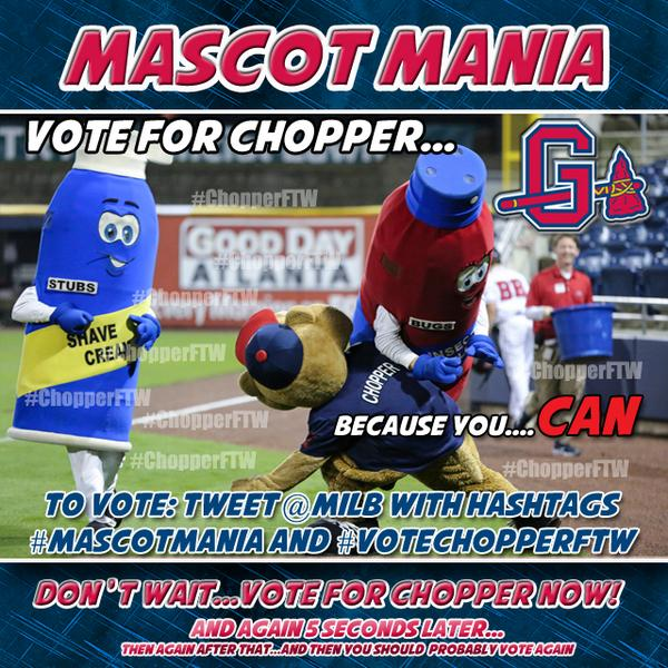 #ChopperFTW vote, vote, vote!!! The busiest groundhog in the league @ChopperGBraves needs your help!  #MascotMania http://t.co/JvCKp0XNZe