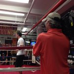 #metro following #Geale as he preps for the #middleweight title on #hbo July 26 #nyc http://t.co/8jeOHtgXsl